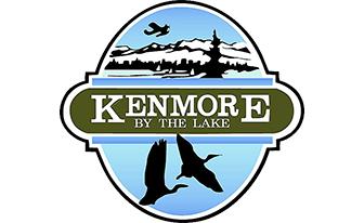 Kenmore Auto Accident Injury