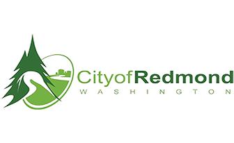 Redmond Auto Accident Injury